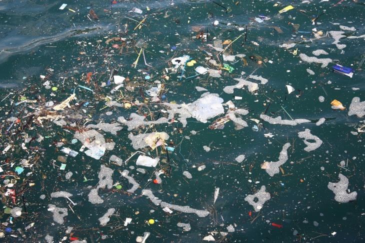 Source: https://pixabay.com/en/sea-oats-garbage-pollution-1017596/